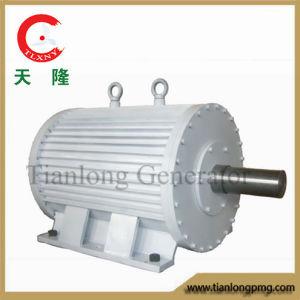 Ff-75kw/100rpm/AC400V Permanent Magnet Alternator (PMG/PMA/Hydro)