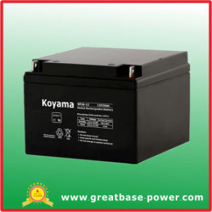 Industrial AGM Battery -Np28-12-12V28ah pictures & photos