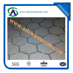Hexagonal Metal Mesh (ADS-HWM-09) pictures & photos