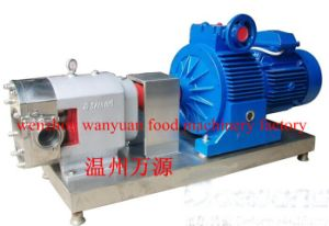 Stainless Steel Rotor Pump-High Viscosity of Jam pictures & photos