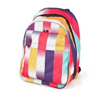 Good School Bag, Fashion Backpack (BP13-024)