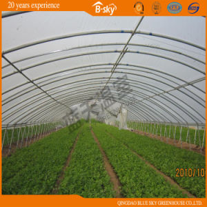 High Cost Performance Arch Single Span Greenhouse pictures & photos