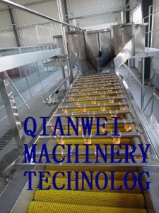 Coconut Milk Processing Production Line (QW- CML) pictures & photos