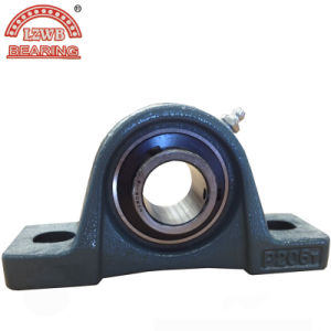 The Type Ugp Pillow Block Bearing with ISO Certificated (UGP204) pictures & photos