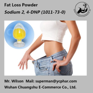 Hot Sellers Fitness Powder Sodium 2, 4-Dinitrophenate/ DNP Na+ 1011-73-0 pictures & photos