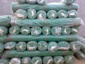 Plastic Mesh for Construction, PE Mesh for Building pictures & photos