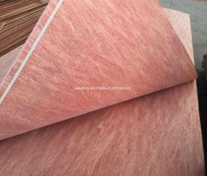 Bintangor Veneer for Plywood pictures & photos