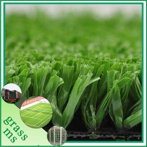 Tennis Sport Grass for Croquet (SGW-C15D27EM)