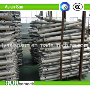 Screw Pile with Double Helical pictures & photos