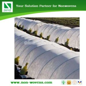 Mulching Non-Woven Application on Agriculture (LTDS03) pictures & photos