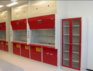 2015 Competitive Price Steel Lab Fume Cupboard pictures & photos