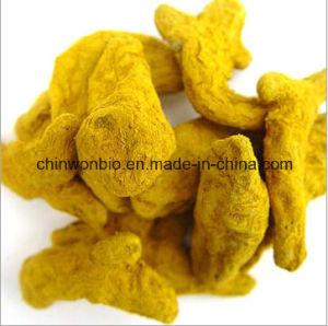 13. Turmeric Extract Powder Curcumin 95% pictures & photos