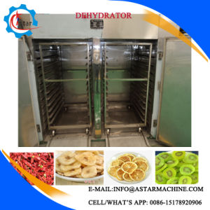 Hor Air Circulation Electric or Gas Heating Vegetable/Fruit Drying Machine pictures & photos