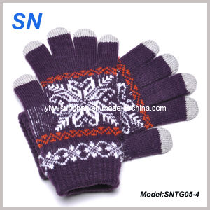 2015 Winter Style Touch Gloves for Lady (SNTG05-4) pictures & photos