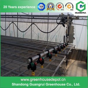 Greenhouse Plastic Drip Irrigation System pictures & photos