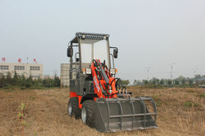 Everun Brand CE Approved 0.8 Ton Mini Loader (ER08) pictures & photos