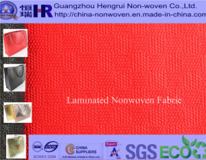 Laminated Nonwoven Fabric for Sport Bag (NO. A2Y008)