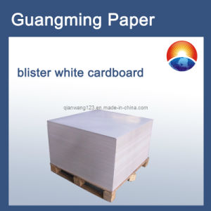 Blister White Card Paper&Packaging Paper&Printing Paper