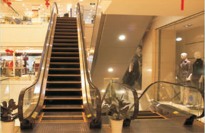 Shandong Fujizy 30 Degree Escalator pictures & photos