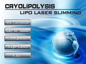 4 Handles Cryolipolysis RF Vacuum Cavitation Slimming Machine (OW-F4) pictures & photos