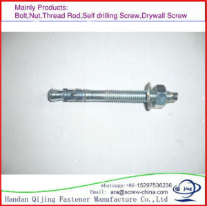 Wedge Anchor, Zinc, Stainless Steel, pictures & photos