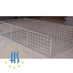 Welded Wire Mesh Gabion Box pictures & photos