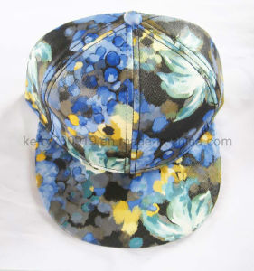 Fashional Printing Fitted Cap/Snapback Caps/Hip-Hop (DH-LH7308) pictures & photos