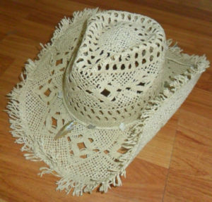 frayed edge paper cowboy hat pictures & photos