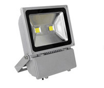 2015 Hot Selling IP65 COB LED Flood Light 100W pictures & photos