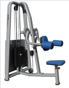 Fitness Equipment / Gym Equipment / Lateral Raise (SM07) pictures & photos