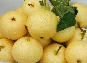 2016 Crop Fresh Golden Pear Hot Sale pictures & photos