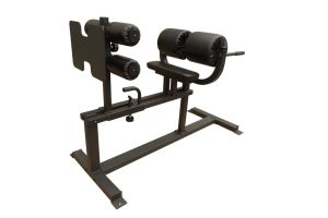 Crossfit Training/Glute Ham Developer/ GHD/Rama Chair (GHD-50) pictures & photos