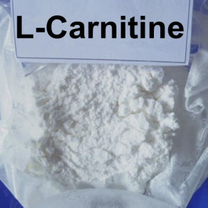 99% USP L-Carnitine Powder Fat Burner Bodybuilding Muscle Building pictures & photos