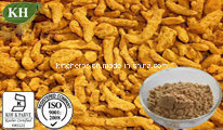 High Quality Turmeric Extract Curcuminoid 10%- 95% by HPLC pictures & photos