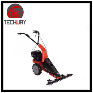4stroke Gasoline Scythe Mower (TWSMQ55B) pictures & photos