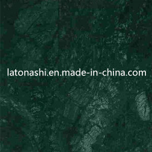 Polished Natural Rainforest Green Stone Marble for Tiles, Slabs, Countertops pictures & photos