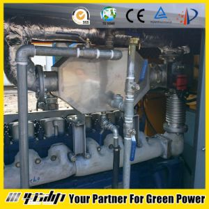 68kw CNG Gas Engine pictures & photos
