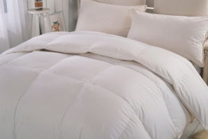 30% White Goose Down 70% Goose Feather Quilt pictures & photos