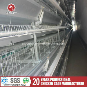 Large Capacity Poultry Farm Equipment Wire Netting Bird Cage pictures & photos