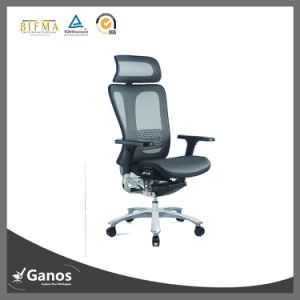 German Style Design Ergonomic Office Mesh Chair pictures & photos