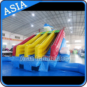Giant Inflatable Water Amusement Park, Inflatable Dophlin Slide with Pool Water Park pictures & photos