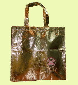Shopping Bag (XT-B059) pictures & photos