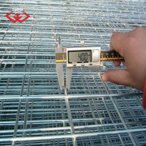 Galvanized Welded Wire Mesh (TYD-0069) pictures & photos