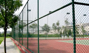 Chain Link Fence (Galvanized or PVC Coated)