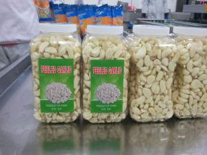 Jinxiang Fresh Peeled Garlic in Jar