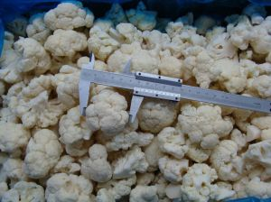IQF Cauliflower pictures & photos