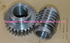 Worm and Worm Wheel, Worm Gear Set pictures & photos