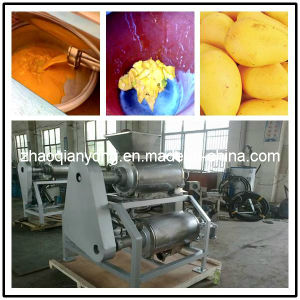 Widely Used Good Quality Full Stainless Steel Mango Pulping Machine pictures & photos