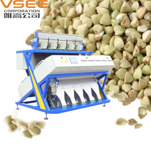 Vsee RGB Full Color Buckwheat Color Sorter pictures & photos