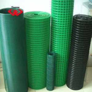 High Quality Welded Wire Mesh (TYC-0001) pictures & photos